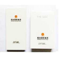 http://www.mllipin.com/爱国者动力舱 移动电源T10 A级锂聚合物电芯 10000mAh 可定制企业LOGO