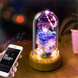创意礼品许愿流光瓶装饰灯蓝牙音响灯创意多功能年会礼品展会礼品定制